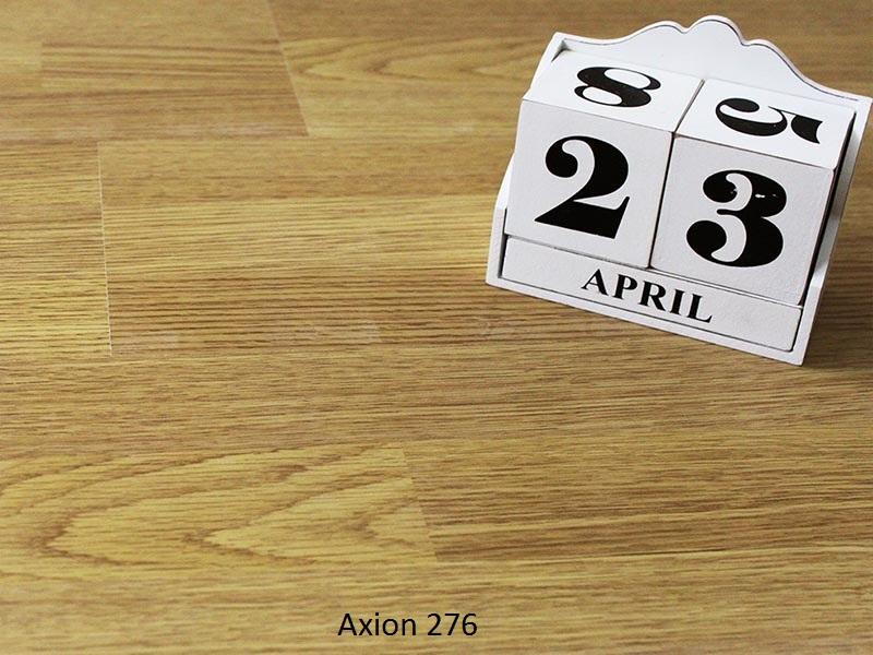 axion-276.jpg