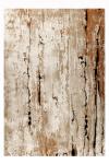 18371-720