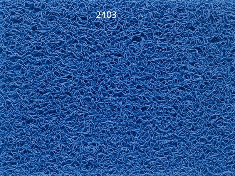2403.jpg